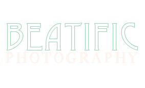 Beatific Photography logo